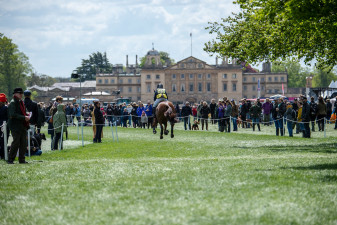 Wieloch's Utah Sun galloping off past Badminton House