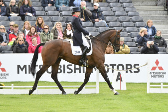 Vanir Kamira strutting her stuff inside the dressage boards
