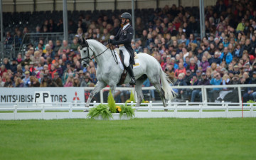 Andrew Nicholson and Swallow Spring sail across the arena