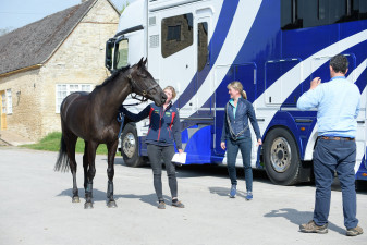 Nicola Wilson's Bulana heads for the stables