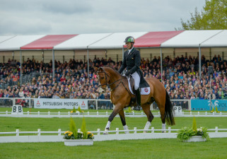 AMAZING! Jonty Evans and Cooley Rorkes Drift take to the main arena again