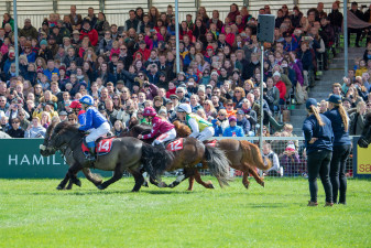 All stations go in the popular Pony Grand National