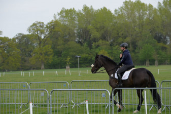 Ben Hobday in the park with Harelaw Wizard