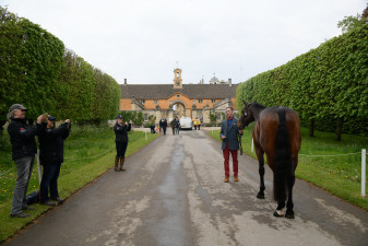 Debutante, David Britnell and team looking proud as punch