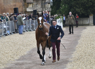 Winner of the Hiho Silver Best Dressed Male Rider, James Sommerville