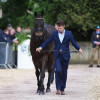 The second mount of Christopher Burton, Cooley Lands whizzes through the final horse inspection