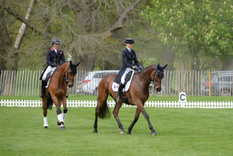 Riders preparing for their dressage tests