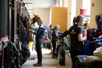 All are hard at work down at the stables, prior to the first horse inspection
