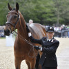 Quefira de l'Ormeau is patted by his rider, Arianna Schivo