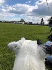 Amy Jones Monty watching the action - Badminton 2019