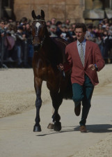 Mark Todd and Horton Point at the Horse Inspection1994