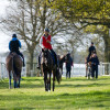 4* riders exercising their horses