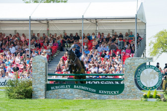 Francis Whittington show jumping