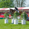 Louise Harwood with Mr Potts show-jumping