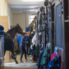 In the stables on Cross Country morning