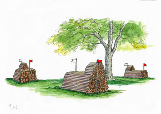9ab. Countryside Log Piles