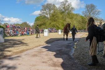 Oliver Townend presents Cooley SRS to the Grand Jury - The pair are accepted