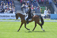 Tim Price is the best-placed rider from New Zealand after a smart test with Ringwood Sky Boy