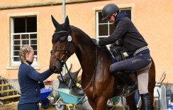 Andy Daines about to head off on a morning hack with Spring Panorama