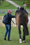 Allstar B getting a huge fuss after taking the lead on dressage day one