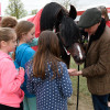 The BHS horse meeting a few fans