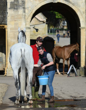 Cult Rewind enjoying a bath before his cross country round