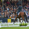 All eyes on the dressage