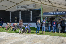 The score board won't be blank for long - Crowds begin to gather as day one of dressage begins