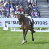 Padraig McCarthy riding a great test with Mr Chunky, which sees the pair lying in equal 12th place overnight