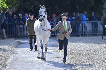 Collien P 2 loving the crowds, as she is presented by Will Furlong