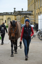 Will Coleman's Obos O'Reilly looking chilled whilst out with his super smiley groom