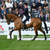Cooley SRS and Oliver Townend took an early lead on day one of dressage