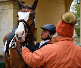 Perfect Stranger being prepped for his test with Izzy Taylor