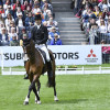 Jonty Evans riding a super test on  Cooley Rorkes Drift to move into 2nd place