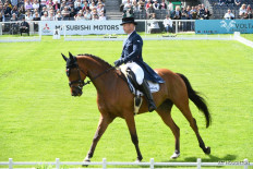 La Biosthetique Sam FBW takes the lead on a score of 24.7 after a wonderful test with Michael Jung