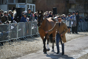 Fan favourites, Ben Hobday and Mulry's Error fly through the first horse inspection