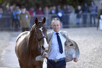 "Jonty Evans presenting ""The People's Horse"", Cooley Rorkes Drift"