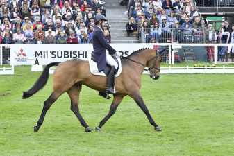 Will Coleman riding a stunning test on Obos O'Reilly, which put the American pair into 7th place