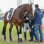 Test done, boots on... A superb test from The Duke Of Cavan sees Yoshiaki Oiwa take 3rd place after the first day of dressage